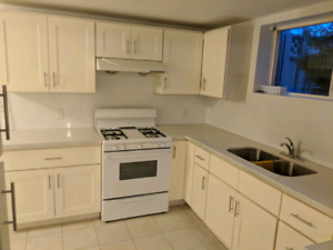 $1300 / 1br - 650ft2 - Sept 1 - One bedroom basement suite near
