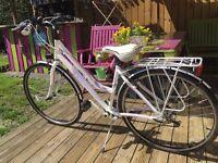 Ladies Ferrini Lucky Bike
