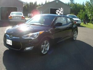 2014 Hyundai Veloster Other