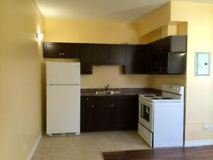 An Exclusive Bachelor Suite for Rent (Glendale & Merritt)