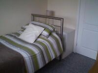 Lovely single bedroom in North London!!!