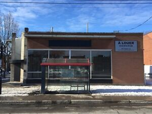 8975 Hochelaga E. - For Sale