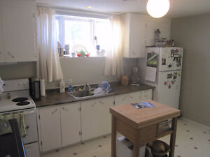 Bright, Spacious 2 Bedroom Basement Suite Near Downtown