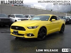 2015 Ford Mustang EcoBoost  - Low Mileage