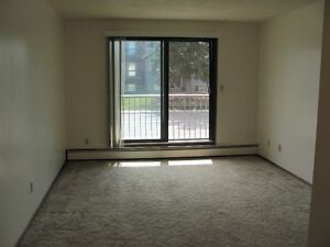 ONE MONTH FREE!!!   Available May  –  1 Bed. Apt