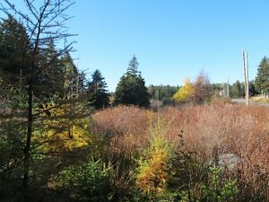 For sale 1.84 acres of land in lovely in Chapels Cove, NL St. John's Newfoundland image 2