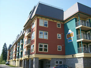 #270 155 Silver Lode Lane, Vernon BC - Deluxe At Silver Star!