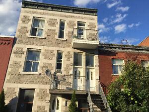 Grand 5 1/2 Mile End Plateau Montréal å partager avec une seule
