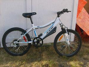 "Kids Six-speed CCM bike - 20"" wheels"