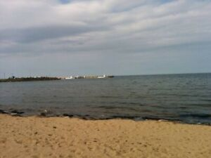 Cottage Rental 150 Feet From Beach!!