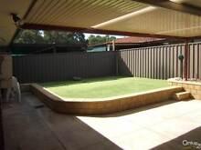 Renovated, Entertain Area, NBN, artificial grass - Saturday 12pm Modbury Tea Tree Gully Area Preview