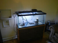 Tank and Stand 32 Gallon