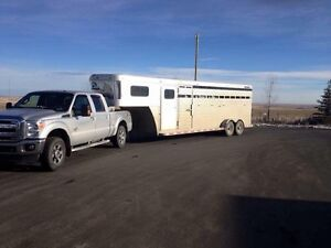 Horse - Livestock hauling- available today