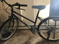 BEWARE stolen bike: NORCO MOUNTAINEER SL