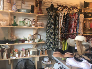 For Sale - Main St. Business and Brand - Womans Clothing