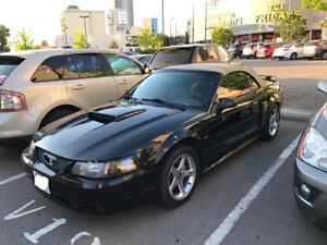 2003 MUSTANG GT CONVERTIBLE GREAT CAR!! SELL $12,000 OR TRADE