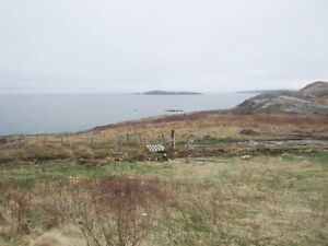 School House Rd - Carbonear, NL - MLS# 1107971