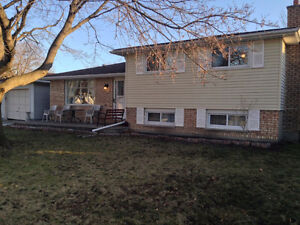 NEW LISTING in CORUNNA.....OPEN HOUSE SUNDAY FEB 19th 1-3PM