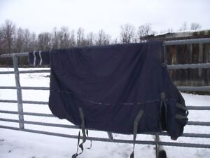 Winter Horse Blanket, size 84
