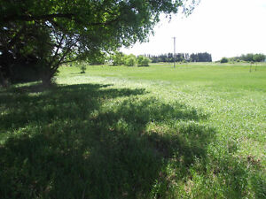 Affordable Acres in Deleau