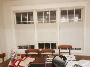 Hunter Douglas Honey comb blinds