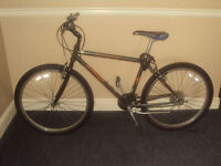 24 speed mountain bike