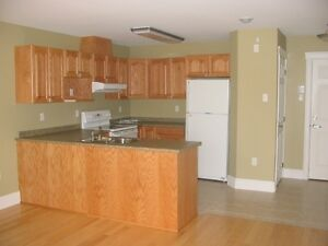 1 bedroom luxurious apartment in Downtown Truro