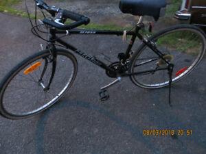 bycicle de promenade