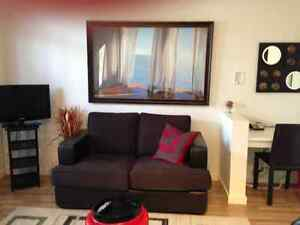 1 bedroom condo fully furnished at the Mode Kelowna.