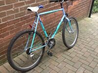 Raleigh Mountain bike gents