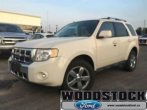 2009 Ford Escape Limited   -