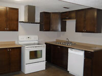 2 Bedroom & 01 Den basement suite (Rent includes every utility)