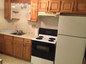 One Bedroom Large Furnished Apartment