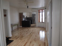 3 Closed Bdr - Plateau- Nice apartment renovated  - 1 FREE Month