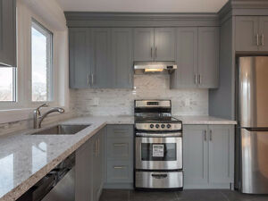Newly Renovated 1+1 Bedroom located in High Park