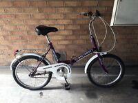 Purple Fold Up Bike