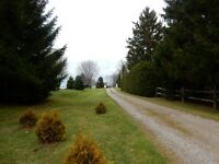 Little House For Sale on 1.41 acres in Union