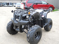 Kids Quad/Atv 125cc Fully Auto With Reverse And Remote Switch!
