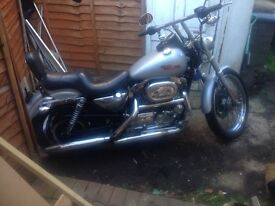 Harley Davidson 1200cc sportster immaculate only 5700 miles from new £4600 ono