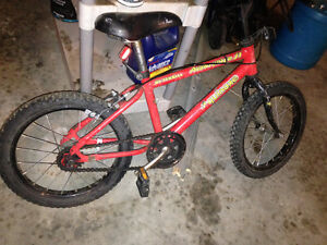Boys single speed mountain bike