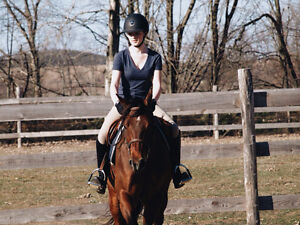 One on one riding lessons- October discount Peterborough Peterborough Area image 3