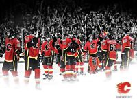 Flames vs sharks March 7