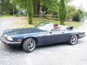 For sale. PRICE REDUCTIONJaguar XJ-S V-12 NEW PHOTOS convertible