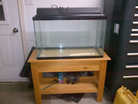 30 Gallon Fish Tank Complete with Stand