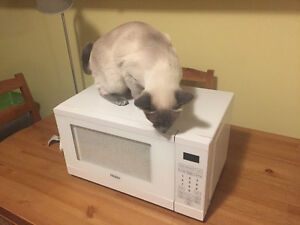 Microwave Barely Used