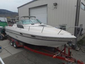Great Cruiser/Fishing Boat