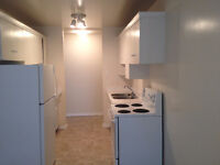 SouthSide 2 Bedroom with laminate floor and new paint from Sept!