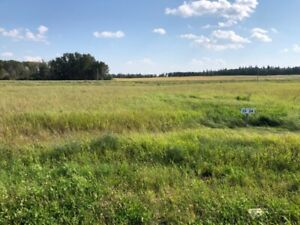 Land for sale investment property