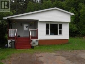 Renovated mini home, new baby barn, private lot, close to town