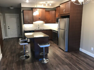 Condo right across from TRU with wifi and utilities included.